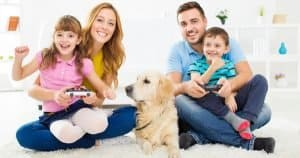Home Security Systems and Pets